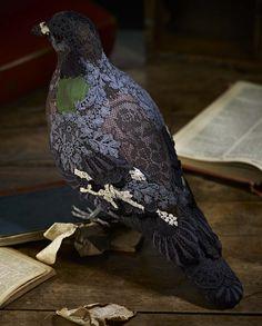 Pigeons by Donya Coward
