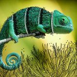 Decorative Costumes Illustrated on Animal Photos by Rohan Sharad Dahotre
