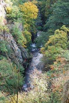 Bodetal (Harz) - Harz, Germany - Besuche diesen und weitere schöne Ort mit Hilfe unserer kostenlosen Harz-App von Das Örtliche! www.harz-app.de