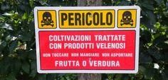 Informazione Contro!: OGM, Xylella fastidiosa, Monsanto, Ttip... ecco la...