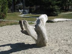 pros and cons of natural playgrounds