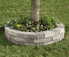 Image result for planters around trees