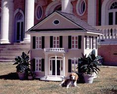haha that is a cool dog house