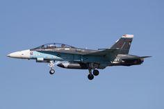 "US Navy McDonnell-Douglas F/A-18B Hornet ""Aggressor"""