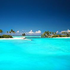 """""""Bluest blue ✨✨ Maldives by ✨✨ Tag who you'd go with """" Vacation Places, Dream Vacations, Vacation Spots, Places To Travel, Places To See, Beautiful Places To Visit, Wonderful Places, Beautiful Beaches, Travel Aesthetic"""
