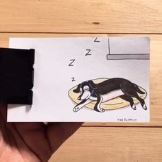 34 New ideas for funny cute drawings animals Cute Funny Animals, Funny Cute, Cute Dogs, Composition Photo, Animals And Pets, Baby Animals, Gato Animal, Dog Cuddles, Carnivore