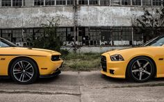 392 Hemi Dodge Charger Super Bee and Yellow Jacket