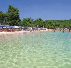 Evia island,Koukounaries beach - Aegean sea,Hellas Holiday Destinations, Vacation Destinations, Beautiful Islands, Beautiful Places, Amazing Places, Skiathos Island, Places To Travel, Places To Visit, Greek Beauty