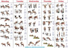 Beginner's Bodybuilding Program