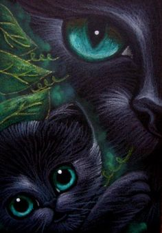 BLACK CAT - KITTEN - A MOTHER'S LOVE 2 Cyra R. Cancel - Pesquisa Google