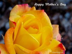 To all those who Love like a Mother....Happy #MothersDay