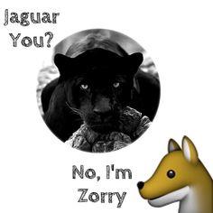 Jaguar you? No, I'm Zorry #hummor #animals  #madewithstudio