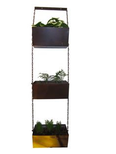 Jardin vertical de 3 120cm x 28cm x 20cm $ 135.000