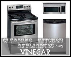 Vinegar Tips: Cleaning Kitchen Appliances