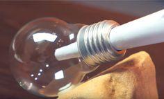 Avec une vieille ampoule, réalisez un superbe terrarium très décoratif