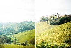 Südsteiermark im Herbst » Karl Bluemel Photography Film Photography, Vineyard, Country Roads, Outdoor, White Rooms, Autumn, Vineyard Vines, The Great Outdoors, Outdoors