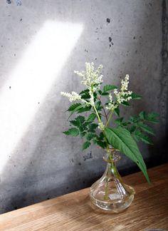 Zetas Tradgardscafé. Diy Flowers, Flower Vases, Flower Arrangements, Simple Flowers, White Flowers, Garden Projects, Diy Projects, Bloom Where Youre Planted, Glass Planter