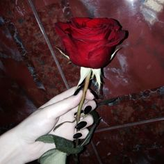rose, grunge, and red image
