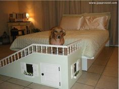 Best dog ramp ever #dachshund Dog Ramp For Bed, Pet Ramp, Diy Dog Toothpaste, Dog Stairs, Dog Furniture, Furniture Outlet, Furniture Stores, Cheap Furniture, Discount Furniture