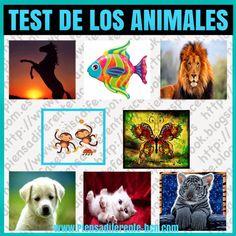 ¿Sabías que tu animal favorito refleja aspectos importantes de tu personalidad? Mira los animales, elige inmediatamente el que te resulte...