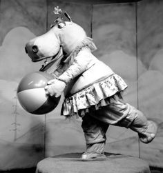 A happy hippopotamus plays with a beach ball, circa 1980.  (Photo by Three Lions)