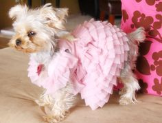 Pink Elegant dress for small dog,Beautiful handmade dog dress, Cute wedding dress for dog,pet fashion. $198.00, via Etsy.