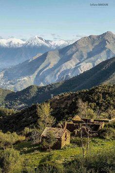 Mont Des Babors , Bejaia. ALGERIE