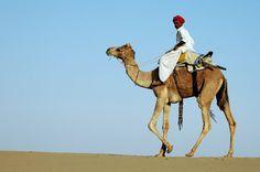 op stap in de woestijn - India