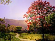 Passos, a photo from Minas Gerais, Southeast | TrekEarth