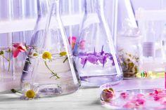 Cum îți Faci Singură Un Parfum. Parts Of A Plant, Feeling Sick, Sliding Glass Door, Active Ingredient, Essential Oils, Deodorant, Feelings, How To Make, Face