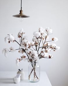 white heads of puffy cotton. such stunningly simple beauty. white heads of puffy cotton. such stunningly simple beauty. white heads of puffy cotton. such stunningly simple beauty. 2019 appeared first on Cotton Diy. White Interior Design, Interior Decorating, Decoration Entree, Cotton Decor, Dried Flowers, Interior Inspiration, Planting Flowers, Sweet Home, Room Decor