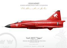 SWEDISH AIR FORCE . FLYGVAPNET KUNGLIGA SKÅNSKA FLYGFLOTTILJEN - F10 ÄNGELHOLM FORCE, SCANIA AIR FORCE WINGÄNGELHOLM, 2000