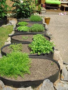 Tire Garden: Why Container Gardening? and Why Tires???