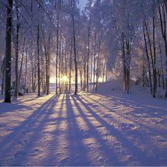 """""""Lite er så vakkert som en vinterdag badende i mild sol  #norway"""""""