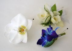 Blue Bom dendrobium orchid, phalaenopsis orchid, and mini cymbidium orchid. all great choices for boutonnieres and corsages.