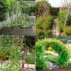 21 beautiful and DIY friendly garden trellis and structures, such as cucumber trellis, bean teepees, grape tunnels, pergolas, screens, etc. Create productive and enchanting garden spaces with trellis planters, panels, and more!
