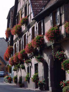 Hunawihr - #Alsace