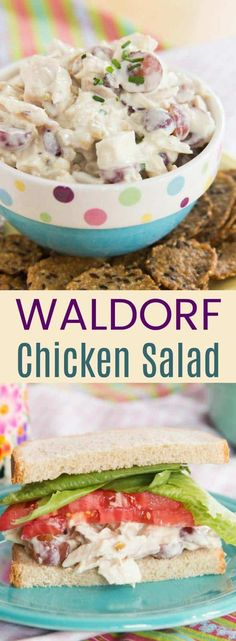 Waldorf Chicken Salad with Grapes and Walnuts is lightened up with Greek yogurt for a protein-packed healthy lunch. This chicken salad recipe is perfect for sandwiches, wraps, lettuce wraps, or on top of a green salad. Kale Chip Recipes, Grape Recipes, Chicken Salad Recipes, Healthy Salad Recipes, Turkey Recipes, Healthy Chicken, Salad Chicken, Shrimp Salad, Shrimp Pasta