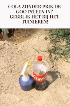 Cola zonder prik de gootsteen in? Gebruik het bij het tuinieren