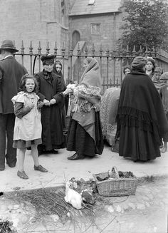 Chicks and Ducks in Galway by National Library of Ireland on The Commons Antique Photos, Vintage Photos, Old Pictures, Old Photos, Old Irish, Images Of Ireland, Connemara, Women In History, Family History