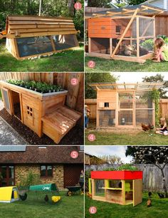 chicken coops. Except the one with the starts on top is a disaster waiting to happen. What chicken wouldn't just hop up there and eat it all?