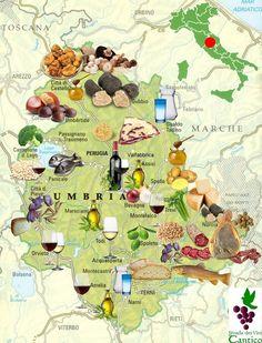 Conheça a Umbria, uma região localizada no centro da Italia, famosa pelas fantasticas paisagens, fé, arte e enogastronomia.