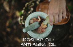 Rosehip Oil - The Anti-Aging Oil.