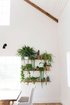 Since this room is so white, anything that isn't white stands out in an exciting way. The green plants stand out and make this room more interesting. Room With Plants, House Plants, Plants In The Home, Wall Of Plants, Garden Plants, Plant Wall, Plant Decor, Kitchen Plants, Deco Nature