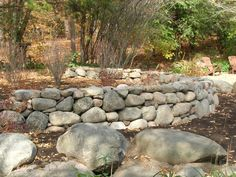 Beautiful curving dry-stacked wall by Steve Coster and Northwind's Landscaping team.