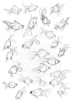 Amy Holliday Illustration : Fish Studies: Exploring movement through drawing, watercolours and ink. Animal Sketches, Animal Drawings, Drawing Sketches, Art Drawings, Sketching, Drawing Tips, Drawing Ideas, Drawings Of Fish, Drawing Faces