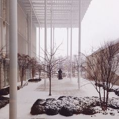 Snow Day at the Art Institute of Chicago #snow #modernwing #artinstituteofchicago,Modern Wing of the Art Institute of Chicago by Renzo Piano Building Workshop, photographed by John Zacherle