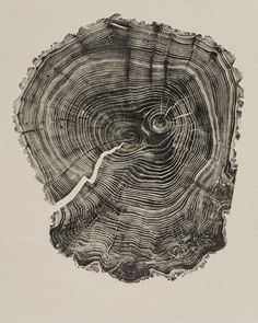 """""""Willow,"""" 49 5/8"""" x 38 5/8"""", relief print, 2011, by Bryan Nash Gill"""