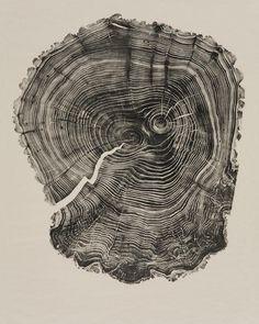 woodcut books native british trees - Buscar con Google