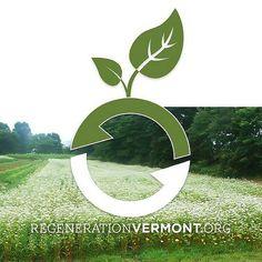 Regeneration Vermont